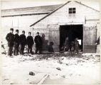 [Men standing in a row next to open barn doors revealing sea mammals.]