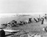 [Dogs and sled at shoreline.]