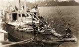 [S.S. Dora alongside dock at Seward.]