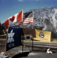 [United States, Canada, And Alaska Centennial flags.]