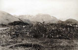 The cemetery at Unalaska, at east side of the village, 1917.