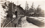 A railroad built to handle material in construction of the large mill at Thane, Alaska. 1918-22[?]