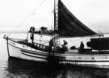 [Port view of black cod boat RANFJORD in Peril Straits]