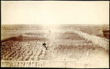 [Man standing in large fenced vegetable garden.]