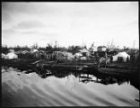 [Tents and houses on shoreline.]