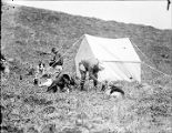 [Two men with dogs and tent.]