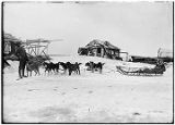 [Sled and dog team.  Woman in sled, man standing in front of lead dog.  Houses in background.]