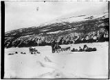 [Two dog sleds and passengers on ice flows, dogs resting, young man standing by one of the sleds.]