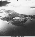Aerial view of Dutch Harbor/Unalaska.