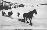 Horses Wearing Snowshoes at Hyder Alaska.