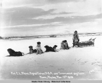 Pvt. E.L. Nava, Signal Corps, U.S.A. and Government dog team. Nome, Alaska. Nov. 13, 1905.