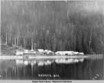 Rodman Bay, sawmill and buildings on the bay, 1902.