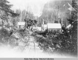 Track from Sanford Cove to Sum Dum Chief Mine Endicott Arm Alaska.