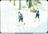 Ski biathlon. Two skiers wearing rifles traverse course.