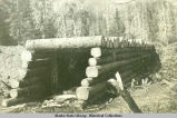 Large log bridge under construction.