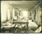 Interior of Katalla Company bunkhouse showing row of beds.