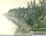 Railroad trestle built along hillside above beach.