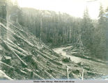 Logging on hillside above river.