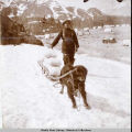 Shorty Fisher's dog, Jack,.who lived eight days under the snowslide of Apr. 30, taken July 12,...