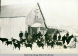 Downings Yukon Mail, Eagle, Alaska, about 1900. Ben Downing's mail becomes ready to go.