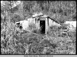 The cabin used by Fitka Balishoff, Tanaina Indian, at Cottonwood Creek, ca. September 22.