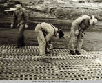 Laying Marston matting, seaplane parking area, September 7, 1943.