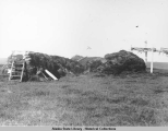 Sod house ruins and drying rack.