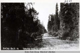 S.W. Dist. Rte 51. Mi  Talkeetna-Cache Cr. July 16-1931. Mi. 2.5 Looking W.