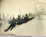 Mushing wood.