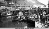 Fishing boats at Juneau city dock.