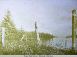 Site of Old Wrangle [Wrangell] , 200 slaves sacrificed there.