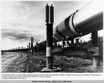 Completed section of trans Alaska pipeline crosses a spruce forest near Glennallen, Alaska.