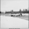 Henry Peters, guide, crossing open stream.  Fish Creek; 7 miles from Cantwell. 11/1941.
