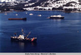 Exxon Valdez clean-up efforts