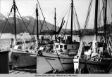 Halibut boats at the Juneau Cold Storage wharf, 1934.