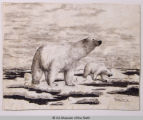 Untitled (Working title: Two Polar Bears)