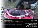 Immersion Camp: 51.  Butchering a Seal: The Meat