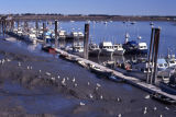 Boats docked at harbor-not able to fish becuase of oil.