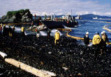 Spill workers and maxi-barge hose beach after Corexit test