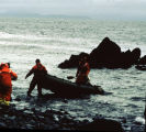 Members of the the Senior Seminar tour  land on nearby island to inspect beach for oil remains...