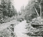 View of the effects of logging on watersheds and fish habitat, Granite Creek, Sitka, 1960.