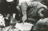 Fish and Game employees taking eggs from a fish, Swanson River, Oct. 1962.