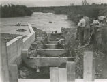Fish and Wildlife Service employees constructing the Brooks Falls fish ladder, ca. 1949.