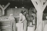 Nushagak Bay cannery workers, Snag Point, ca. 1939.