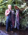 Alaska Dept. of Fish and Game employee Tom Rutz holds a king salmon on the King Salmon River,...