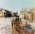 """Deafy Boy"" Wassillie Andrew with ""Smiley"" Alex Andrew on a dog sled."