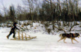 A young boy competes in sled dog races in Kokhanok.