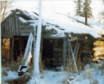 Ole's other cabin 1981.